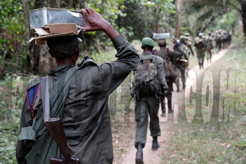 Negara Demokrasi Di Republik Demokratik Kongo